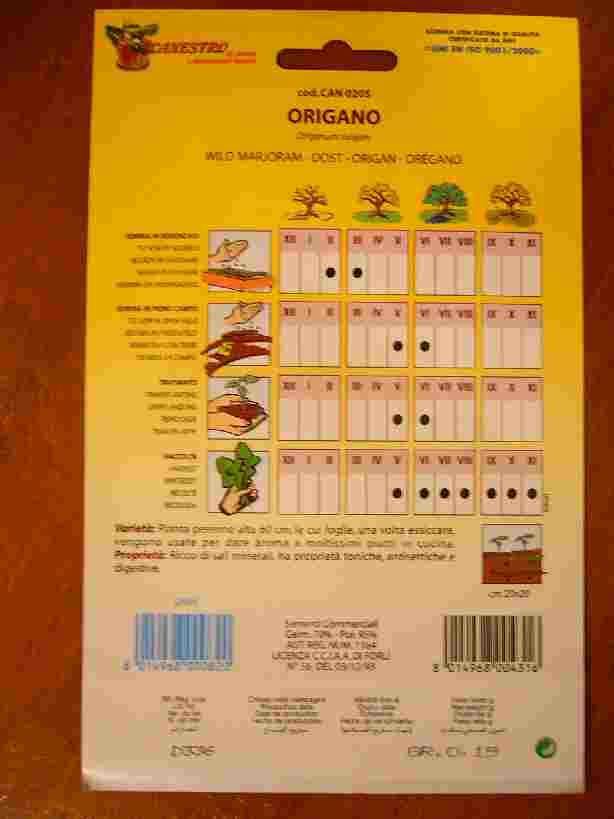 origano オレガノの種